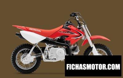 Ficha técnica Honda crf50f 2013