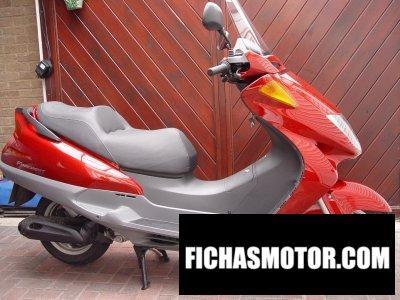 Ficha técnica Honda fes 250 1999