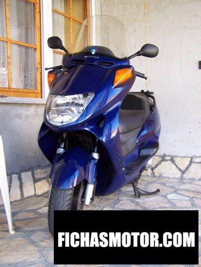 Imagen moto Honda fes 250 foresight año 2000