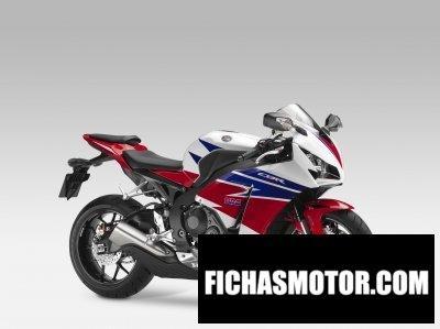 Imagen moto Honda fireblade año 2014