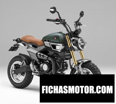Ficha técnica Honda grom 50 scrambler concept-two 2016