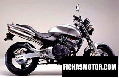 Imagen moto Honda hornet 250 año 2002