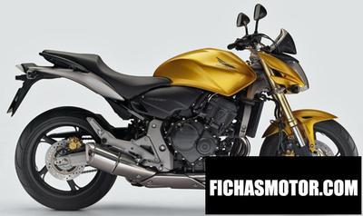 Imagen moto Honda hornet 600 año 2007