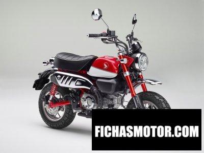 Imagen moto Honda Monkey año 2019