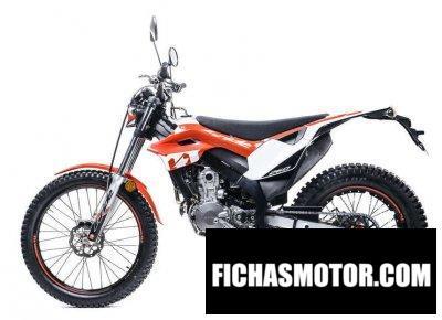 Imagen moto Honda Montesa 4 Ride año 2019