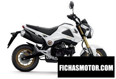 Ficha técnica Honda msx125 2015