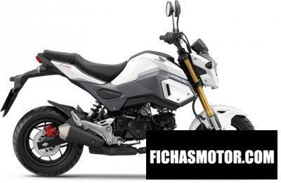 Imagen moto Honda msx125 año 2017