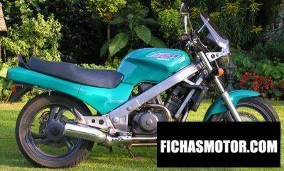Imagen moto Honda ntv 650 año 1997