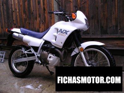 Imagen moto Honda nx 250 año 1988