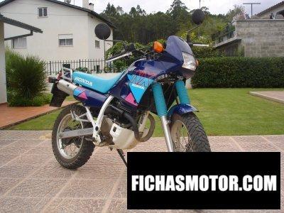 Imagen moto Honda nx 250 año 1992