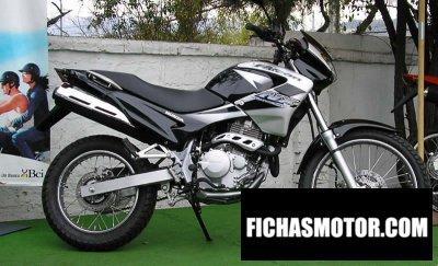 Imagen moto Honda nx-4 falcon año 2003