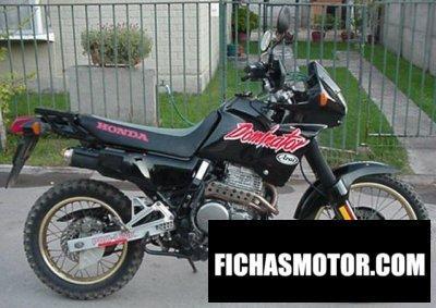 Imagen moto Honda nx 650 dominator año 1990