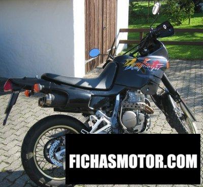 Imagen moto Honda nx 650 dominator año 1993