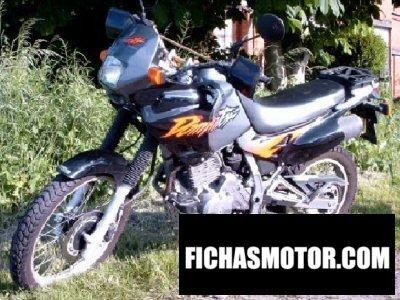 Imagen moto Honda nx 650 dominator año 1997