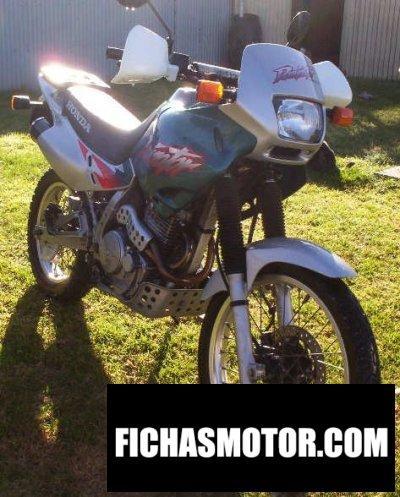 Imagen moto Honda nx 650 dominator año 1999