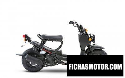 Imagen moto Honda Ruckus año 2019