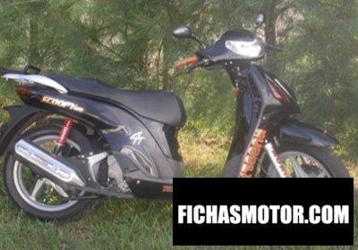 Ficha técnica Honda sh 150 2002