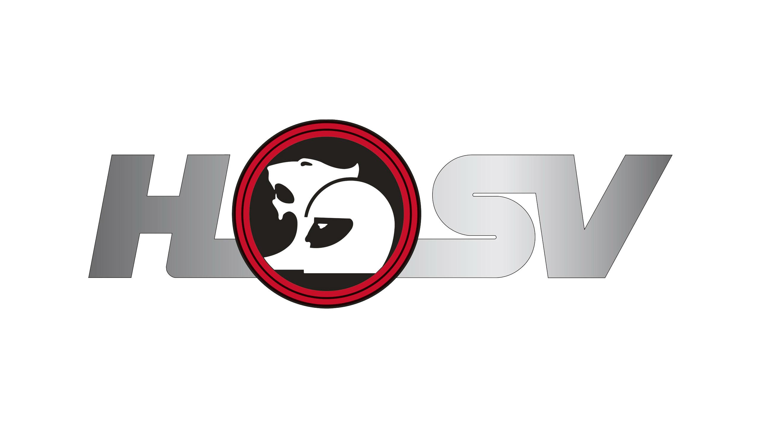 Imagen logo de HSV