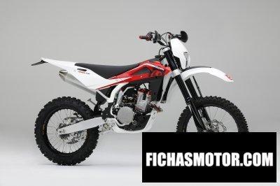 Imagen moto Husqvarna te310 año 2010