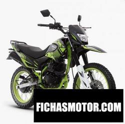 Imagen moto Italika DM 150 Sport 2020