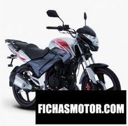 Imagen moto Italika DT250Sport 2020