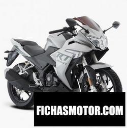 Imagen moto Italika RT250 2020
