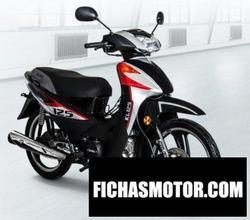 Imagen moto Izuka KL125 2019