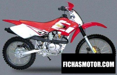 Imagen moto Jincheng st 125 y cross año 2003
