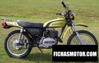 Image de la moto Kawasaki 250 f 11 année 1974