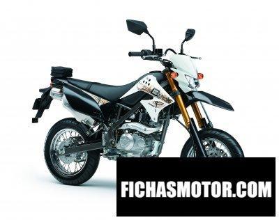 Ficha técnica Kawasaki d-tracker 125 2012