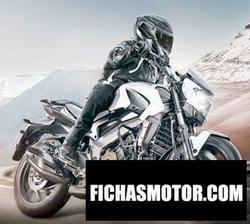 Imagen moto Kawasaki Dominar 400 2020