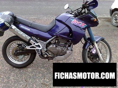 Imagen moto Kawasaki kle 500 año 1991