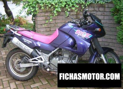 Imagen moto Kawasaki kle 500 año 1992