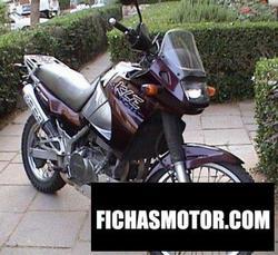 Imagen de Kawasaki kle 500 año 2000