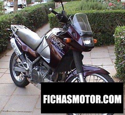 Ficha técnica Kawasaki kle 500 2000