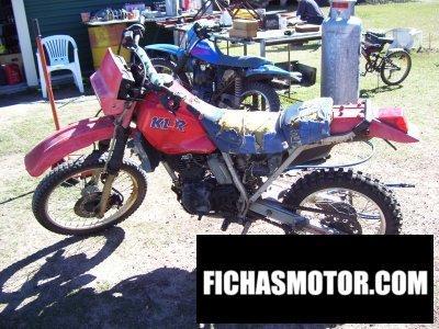 Ficha técnica Kawasaki klr 250 1985