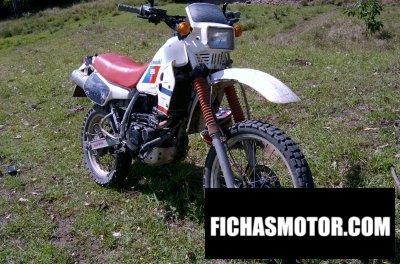 Imagen moto Kawasaki klr 250 año 1987