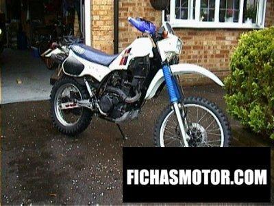 Imagen moto Kawasaki klr 600 año 1984
