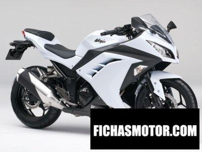 Imagen moto Kawasaki ninja 250 año 2013
