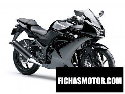 Imagen moto Kawasaki ninja 250r año 2010