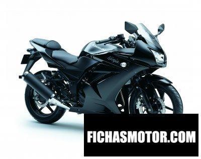 Imagen moto Kawasaki ninja 250r año 2011