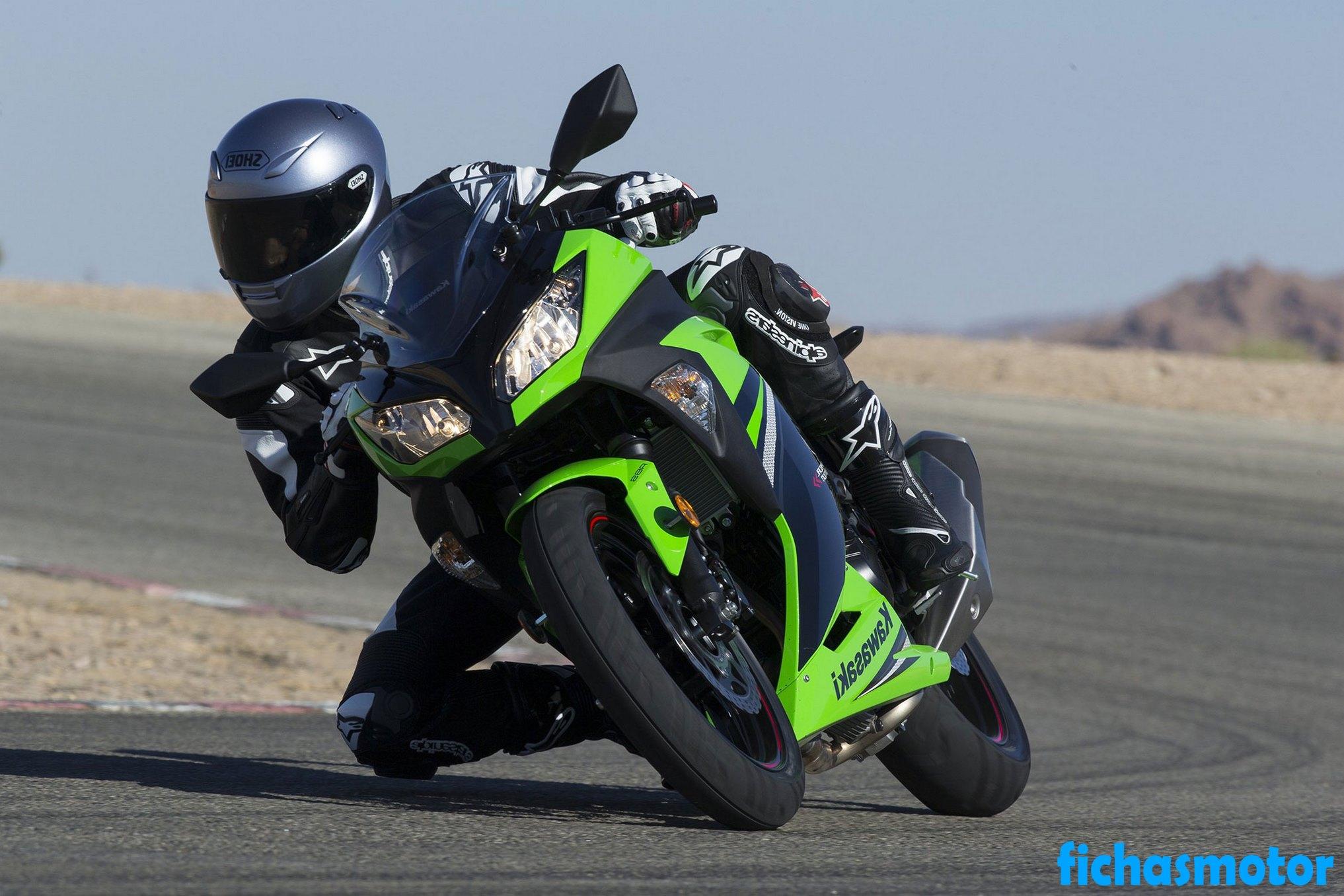 Imagen moto Kawasaki ninja 300 año 2014