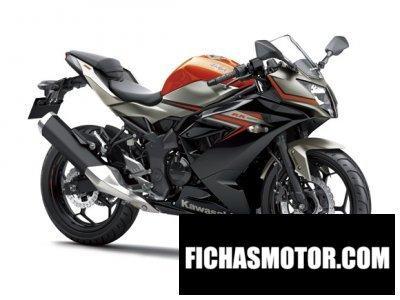 Ficha técnica Kawasaki ninja rr mono 2016