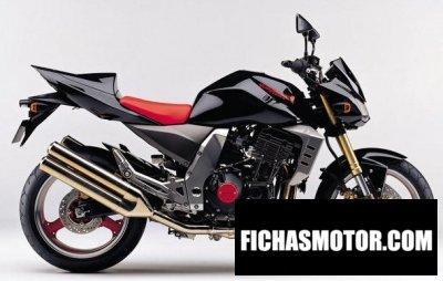 Ficha técnica Kawasaki z 1000 2003