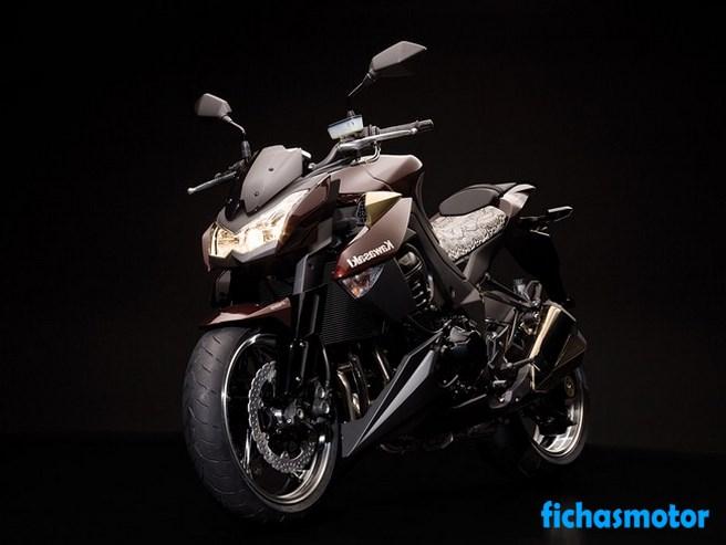 Imagen moto Kawasaki z1000 año 2010