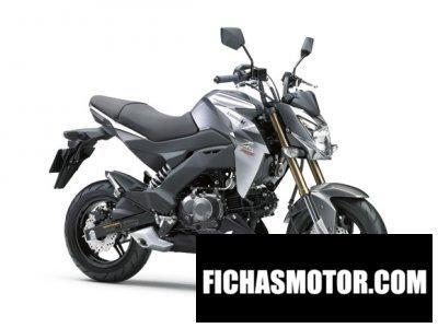 Ficha técnica Kawasaki z125 pro 2016