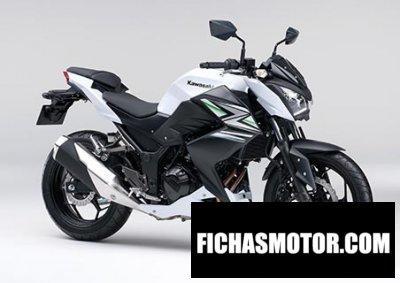 Imagen moto Kawasaki z250 año 2014