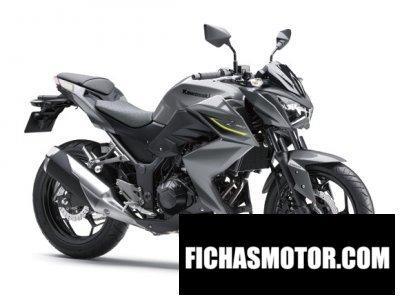Imagen moto Kawasaki z250 año 2017