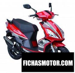 Imagen moto Kreidler rmc-h 50 dd 2010