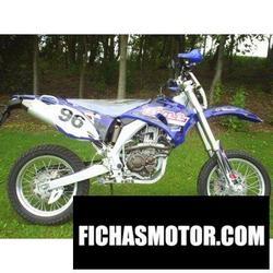 Imagen moto Mikilon cy250a 2008